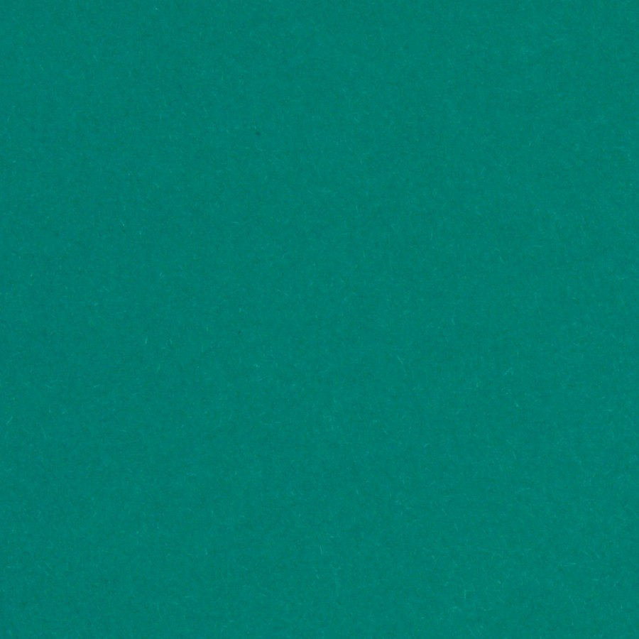 """100# Cover Colorplan Marrs Green 12"""" x 12"""" Sheets Pack of 50"""