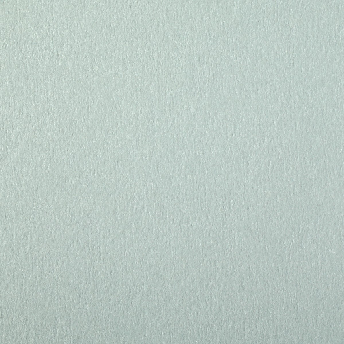 "Colorplan Powder Green 12 1/2"" x 19"" 130# Cover Sheets Pack of 50"
