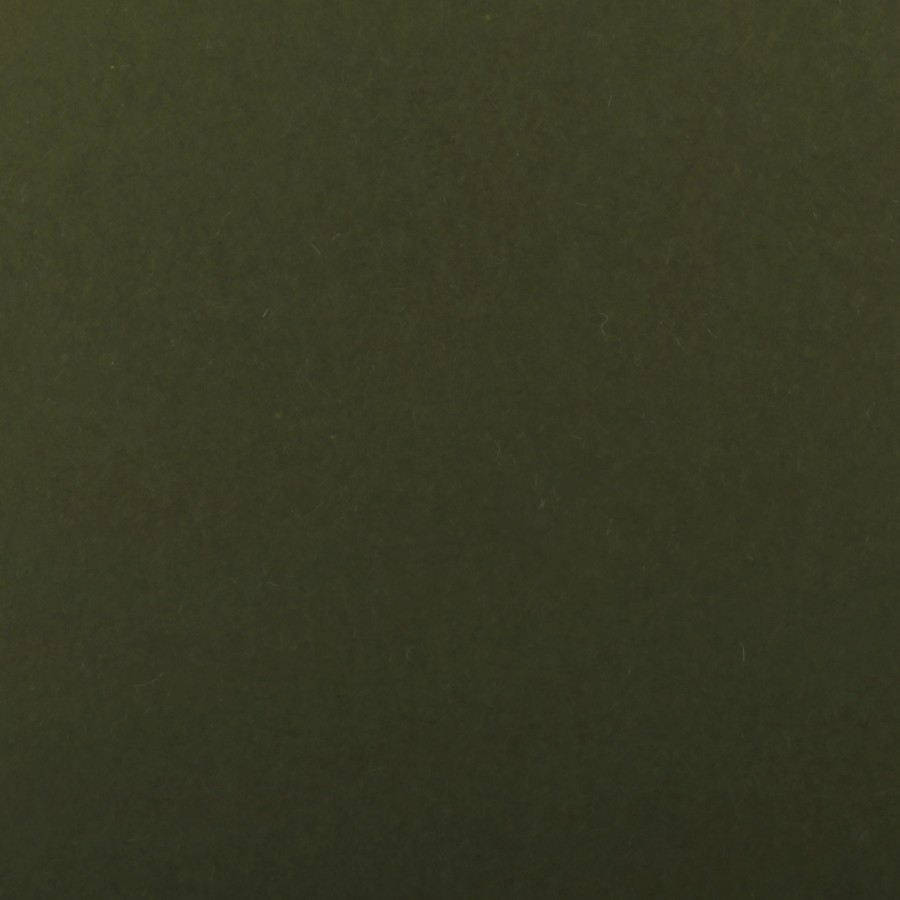 Gruppo Cordenons So?Wool Green Loden 8.5 x 11 92# Cover Sheets