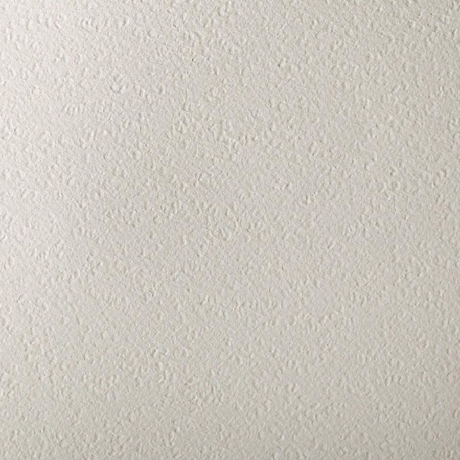 Gruppo Cordenons Canaletto Bianco 8.5 x 11 78# Cover Sheets