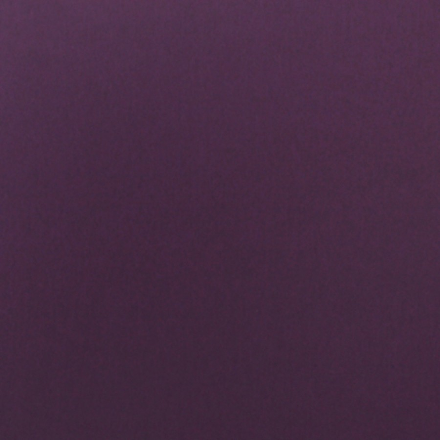 Gruppo Cordenons Plike Purple 8.5 x 11 95# Text Sheets