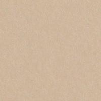 "Gmund Colors Matt #84 Chardonnay 12 1/2"" x 19"" 89# Cover Sheets Bulk Pack of 100"