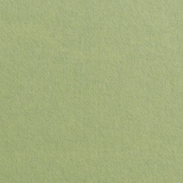 "Gmund Colors Matt #03 Olive Green 27.5"" x 39.3"" 68# Text Sheets"