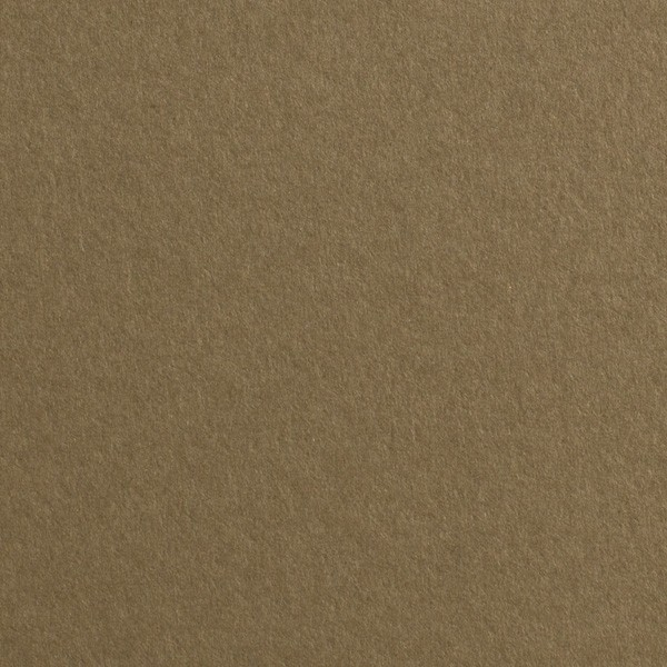 """Gmund Colors Matt #06 Walnut 27.5"""" x 39.3"""" 68# Text Sheets"""