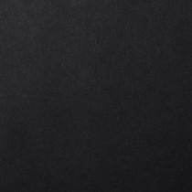 "18.5"" x 12.5"" Digital 100# Cover Colorplan Ebony Black Bulk Pack of 100"