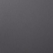"""18.5"""" x 12.5"""" Digital 100# Cover Colorplan Dark Grey Bulk Pack of 100"""