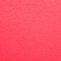 """12 1/2"""" x 19"""" 130# Cover Colorplan Hot Pink Sheets Pack of 50"""