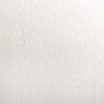 "18.5"" x 12.5"" Digital 100# Cover Colorplan Pristine White Bulk Pack of 100"