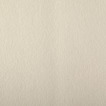 """Colorplan China White 12 1/2"""" x 19"""" 100# Cover Sheets Bulk Pack of 100"""