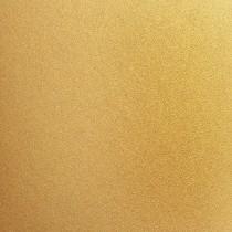 Stardream for HP Indigo Gold 19 x 13 105# Cover Sheets