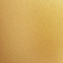 """Stardream Gold 8 1/2"""" x 11"""" 74# Text C1S Sheets Bulk Pack of 250"""