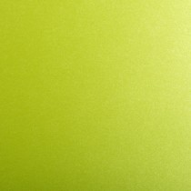 Gruppo Cordenons So?Silk Shocking Green 12 x 12 88# Text Sheets