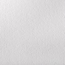 Gruppo Cordenons Canaletto Premium White 8.5 x 11 111# Cover Sheets