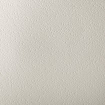 Gruppo Cordenons Canaletto Bianco 27 9/16 x 39 3/8 111# Cover Sheets