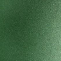 Arjo Wiggins Curious Metallics Botanic 12.5 x 19 111# Cover Sheets
