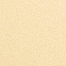"Gmund Alezan Daim Wild Finish 12"" x 12"" 111# Cover Sheets"