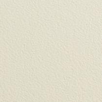 "Gmund Alezan Chevreau Wild Finish 12 1/2"" x 19"" 111# Cover Sheets"