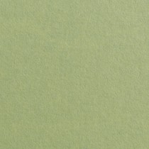 "Gmund Colors Matt #03 Olive Green 12"" x 12"" 68# Text Sheets Pack of 50"