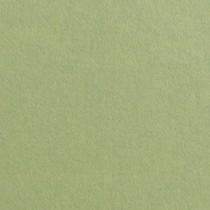"Gmund Colors Matt #03 Olive Green 27.5"" x 39.3"" 68# Text Sheets"