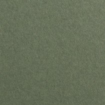 "Gmund Colors Matt #16 Seedling Green 12"" x 12"" 68# Text Sheets Bulk Pack of 100"
