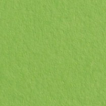 "Gmund Colors Matt #32 Leaf Green 27.5"" x 39.3"" 68# Text Sheets"