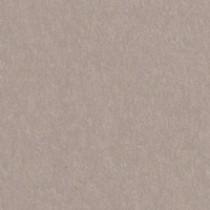"Gmund Colors Matt #85 Timberwolf Gray 27.5"" x 39.3"" 81# Text Sheets"