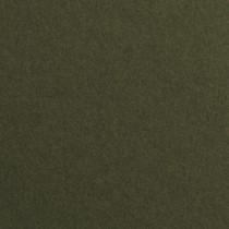 """Gmund Colors Matt #88 Forest Green 12 1/2"""" x 19"""" 81# Text Sheets Bulk Pack of 100"""