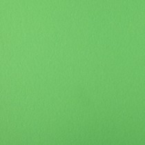 "Astrobrights Martian Green 12"" x 12"" 65# Cover Sheets Pack of 50"