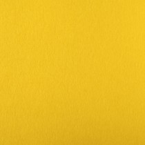 """Astrobrights Solar Yellow 12 1/2"""" x 19"""" 100# Cover Sheets Bulk Pack of 100"""
