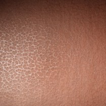 "Neenah Folding Board Aged Copper 8 1/2"" x 11"" 18pt Sheets Bulk Pack of 100"