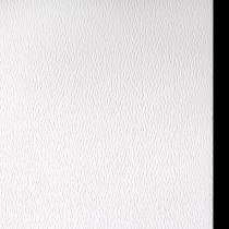 Mohawk Strathmore Premium Pastelle (formerly Strathmore Pastelle) Soft White (formerly Fluorescent White) 12.5 x 19 No Deckle Edge 80# Cover Sheets