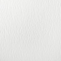 Reich Odeon Gala 12.5 x 19 84# Text Sheet
