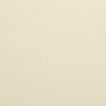 "8 1/2"" x 11"" 120# Cover Mohawk Renewal Straw Harvest White Rough Finish Sheets Bulk Pack of 250"