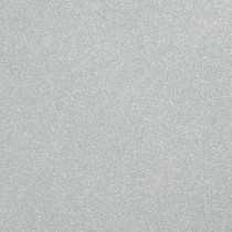 "81# Text Shimmer Sand Silver 8 1/2"" x 11"" Sheets Pack of 50"