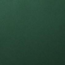 Basis Green 11 x 17 80# Cover Sheets